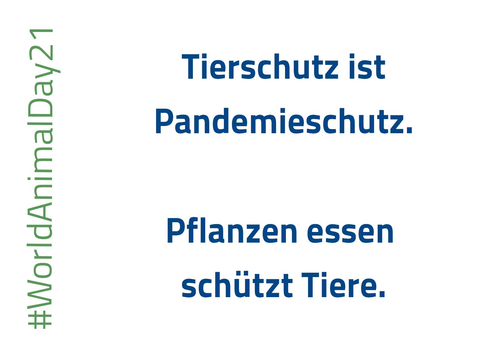Text: Tierschutz ist Pandemieschutz. Pflanzen essen schützt Tiere. #WorldAnimalDay21